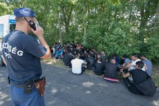Nouă migranţi din Irak, găsiţi ascunşi în podeaua remorcii unei utilitare