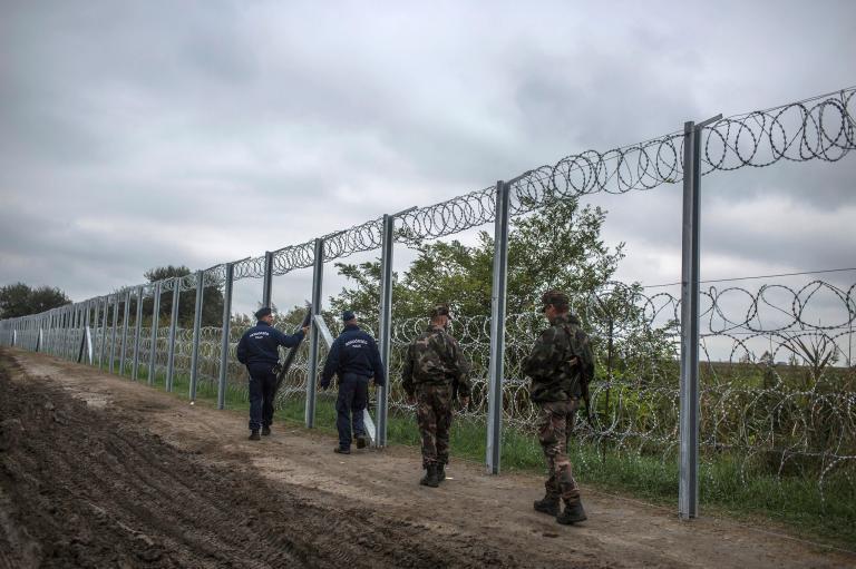 Patru călăuze şi cinci imigranţi irakieni, opriţi la frontiera cu Ungaria