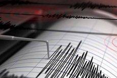 Trei cutremure în zona Vrancea în doar câteva ore. UPDATE
