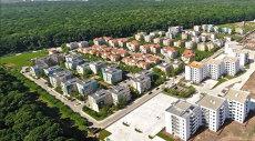 Primăria Capitalei vrea să facă un drum prin pădurea Băneasa. Motivul pentru care muncipalitatea vrea să preia terenul de la Romsilva