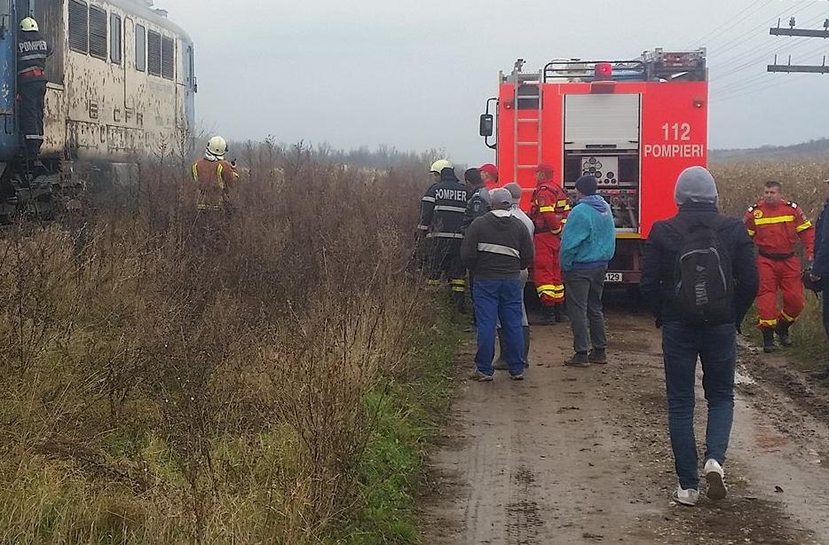 Aproximativ 100 de oi, spulberate de un tren care mergea spre Budapesta. Cum s-a întâmplat accidentul, deşi turma era supravegheată