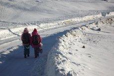Şcolile şi grădiniţele din Bucureşti, închise toată săptămâna. Tel Verde pentru familiile care nu au cu cine să lase copiii