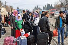 Operaţiune de amploare în Timiş pentru destructurarea unei reţele care trecea ilegal imigranţi din Serbia în România