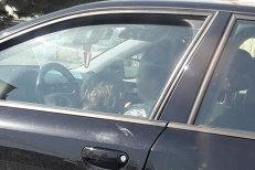 Poliţia caută o şoferiţă de Audi după ce această imagine a fost luată pe cea mai aglomerată stradă din Alba Iulia