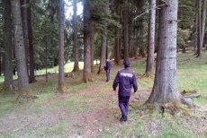 Salvamontiştii caută în Munţii Bucegi un turist american care s-a lansat cu parapanta şi a dispărut