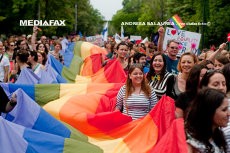 CCR discută pe 5 iulie recunoaşterea căsătoriilor homosexuale