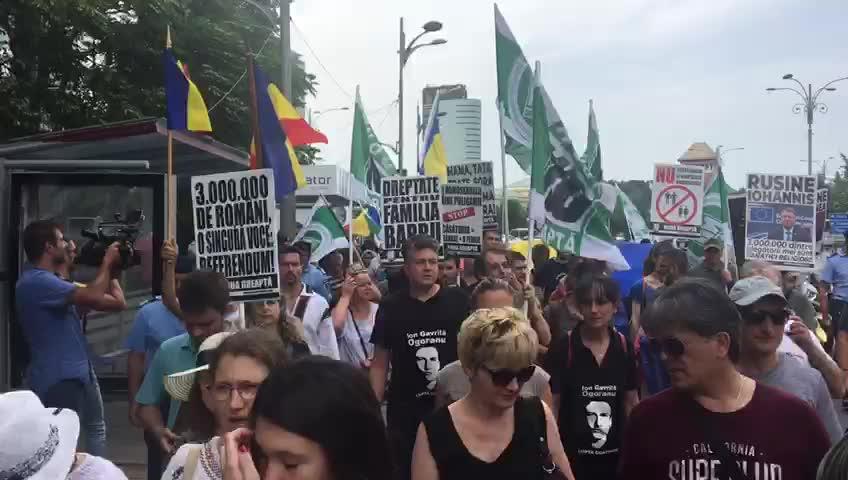 Imagini pentru marsul normalitatii 2018