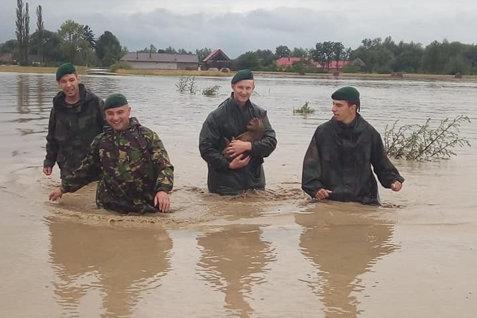 """Fotografiile care au impresionat toată România: Un pui de căprioară, salvat din apă de Vânătorii de munte: """"Nu lăsăm pe nimeni în urmă!"""""""