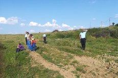Fetiţa de doi ani dispărută din căruţa părinţilor, găsită ÎN VIAŢĂ chiar de tatăl său