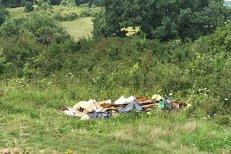 Amendat pentru că aruncase gunoiul LA MARGINEA DRUMULUI