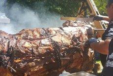 Taur de aproape DOUĂ TONE, gătit la proţap în Sibiu. Sute de oameni au aşteptat la coadă pentru a primi o porţie