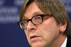 Lider politic în Parlamentul European, INSINUĂRI despre IMPLICAREA serviciilor în MANIPULAREA informaţiilor privind protestele din Piaţa Victoriei