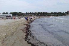 O plajă din Mangalia a fost ÎNCHISĂ din cauza poluării cu DEŞEURI petroliere