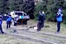 Patru braconieri, prinşi după ce au împuşcat o CAPRĂ NEAGRĂ în Munţii Parâng