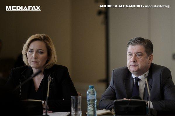 Ministrul Afacerilor Interne Carmen Dan, la audieri