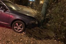 Fiul lui MIRON COZMA a băut şi A INTRAT cu maşina într-un stâlp, după care a fugit de la locul accidentului. Ce ALCOOLEMIE avea DAN COZMA