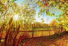 Vreme CALDĂ în al doilea weekend din noiembrie. Temperaturi cu până la 6 grade mai mari decât media perioadei