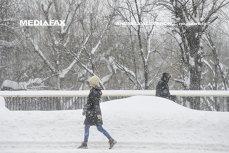 COD GALBEN de ceaţă şi de vânt pentru 10 judeţe. 94 de copaci au fost RUPŢI din cauza ninsorii în Capitală