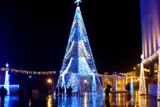 CEL MAI SCUMP brad din ţară râmâne ÎN DEPOZIT anul acesta. Autorităţile din Târgu Jiu vor un brad NATURAL