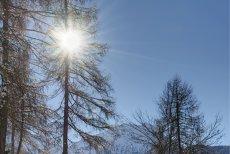Vremea se încălzeşte în weekend. Temperaturi de până la 11 grade Celsius în unele regiuni