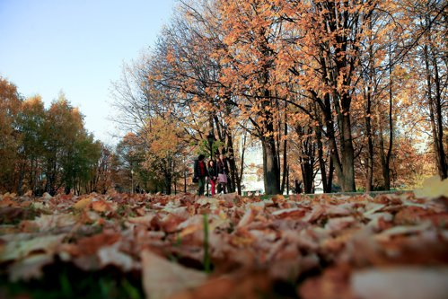 PROGNOZA METEO. Vreme călduroasă, dar ceaţă dimineaţa. Cum va fi vremea în Bucureşti
