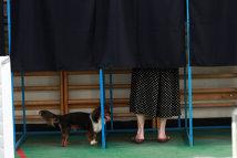REFERENDUM 2012. Autoritatea Electorală Permanentă a achiţionat soft-ul pentru DEPISTAREA VOTULUI MULTIPLU