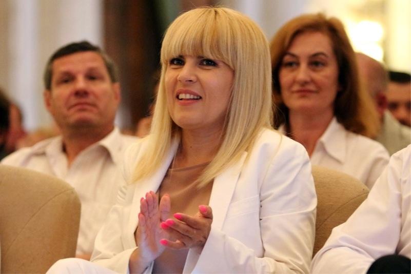 Elena Udrea, candidat oficial al PMP la prezidentiale