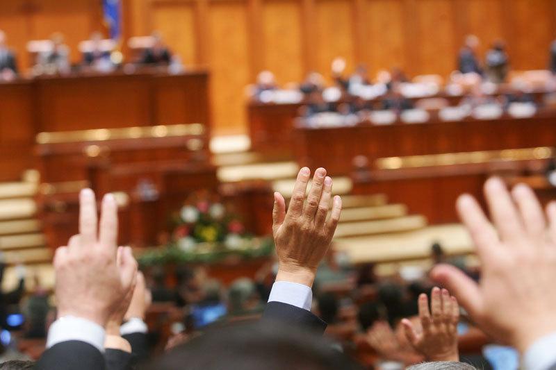 Comisia de munca a Senatului aproba amnistia fiscala a mamelor si pensionarilor