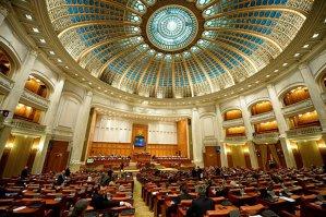 Metoda Zgonea. Cum să numeri 200 de voturi în câteva secunde la dezbaterea bugetului de stat