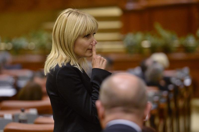 Elena Udrea a fost intrebata daca ii este dor de colegii din Parlament: ,,Voi deschide televizorul