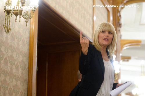 """Elena Udrea: """"E maxim de ipocrizie. A ajuns cineva în Parlament prin campanii finanţate altfel decât cu sponsorizări?"""""""