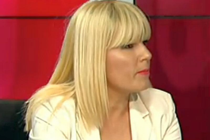 """Elena Udrea: """"Avem tabloul complet al luptei împotriva corupţiei. Ţintele sunt alese, dosarele acestora se fabrică"""""""