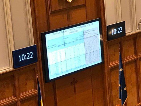 Slideshow-ul care a rulat în timpul discursului lui Petre Daea din Parlament