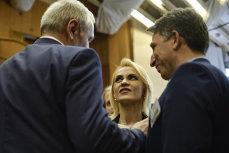 CEx al PSD schimbă OPT MINIŞTRI din Guvernul Dăncilă. Gabriela Firea DEMISIONEAZĂ din funcţiile de conducere din PSD