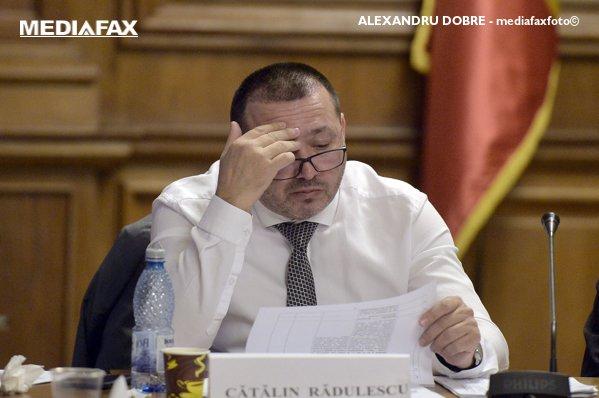 """Rădulescu, despre plângerea la PG pe """"Fără penali"""" Peste 500.000 de semnături au fost falsificate"""