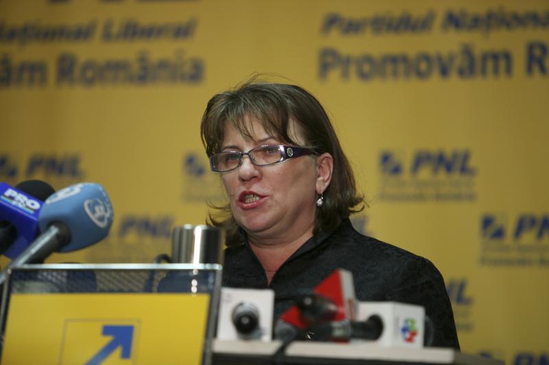 Norica Nicolai este noul preşedinte al Comisiei juridice din Senat