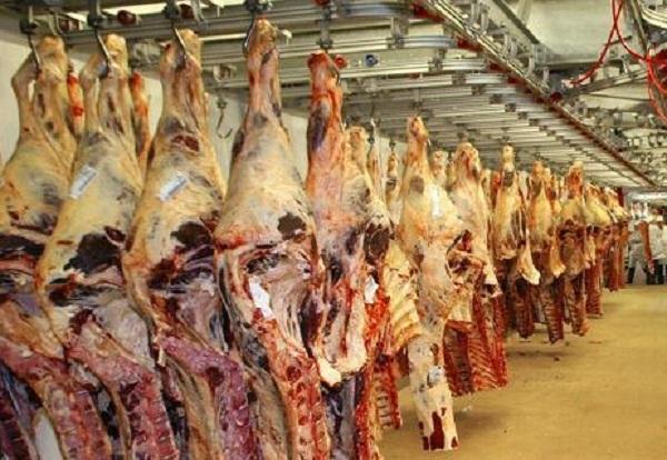Un ministru francez descrie circuitul comercial al cărnii de cal, de la un atelier din România, până în magazinele englezeşti