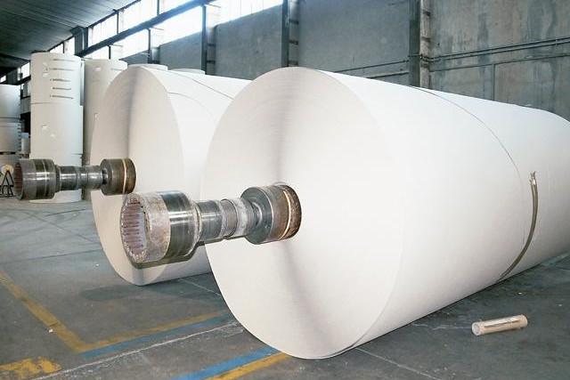 Fabrica de celuloză şi hârtie Someş Dej a fost scoasă la vânzare cu 7,9 milioane de euro