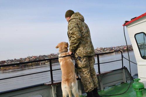 Vameşii ucraineni au făcut descoperirea vieţii lor în Râul Tisa. Ce venea din România. VIDEO
