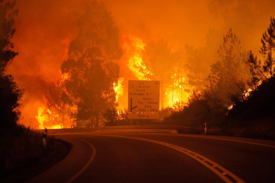 62 de morţi şi 50 de răniţi în urma incendiilor de pădure din Portugalia