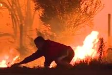 Imagini emoţionante surprinse în infernul din California. Gestul unui bărbat demonstrează că fiecare viaţă salvată contează. VIDEO