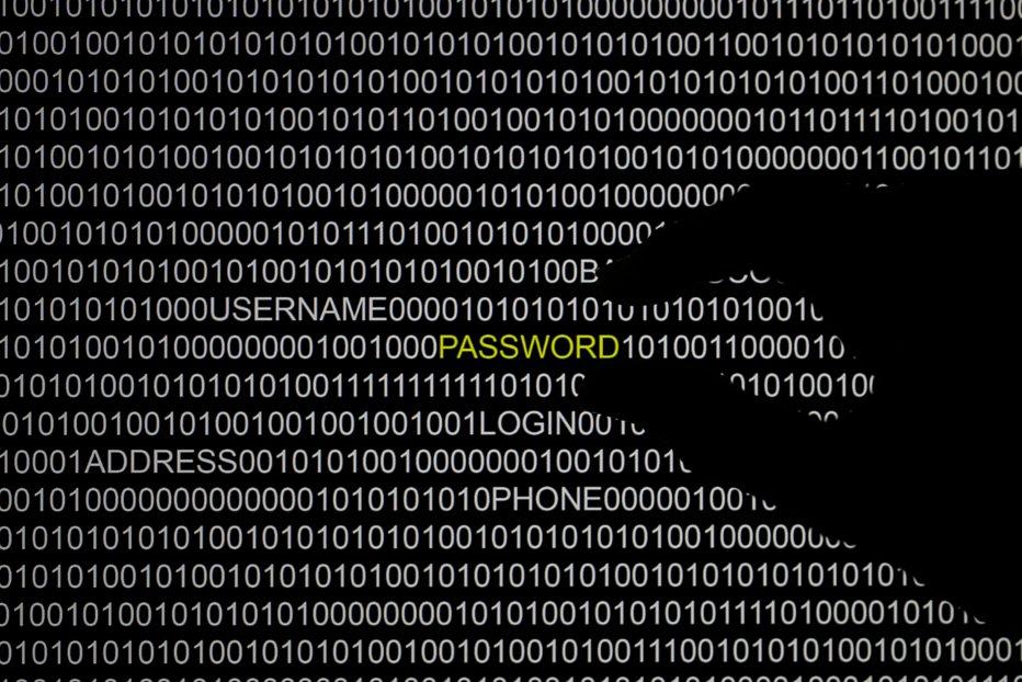 Doi hackeri români, inculpaţi în SUA pentru accesarea camerelor de supraveghere de la Washington. Au compromis sistemul informatic înainte de ceremonia de inaugurare a lui Donald Trump