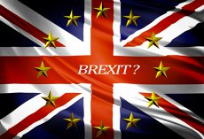 Un nou partid politic din Marea Britanie a lansat o campanie împotriva ieşirii din UE