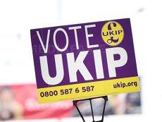Cine este noul preşedinte al Partidului Independenţei Marii Britanii (UKIP), Gerard Batten