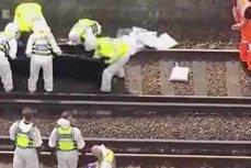 Trei persoane şi-au pierdut viaţa după ce au fost lovite de un tren, la Londra