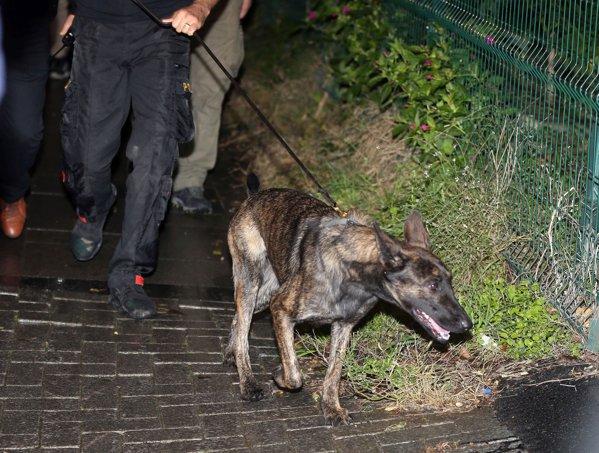 Poliţiştii turci caută rămăşiţele lui Khashoggi în pădure