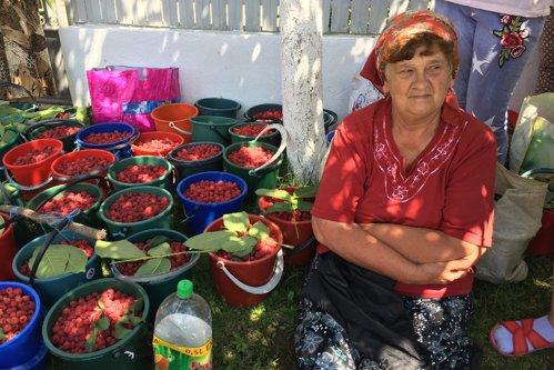 Cum ajunge zmeura românească de la marginea uliţei în Europa