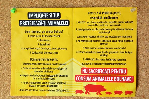 Avertisment pesta porcina africana