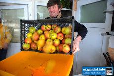 De ce se bat românii pe sucul natural de mere – povestea de succes a producătorului Gigel- REPORTAJ VIDEO