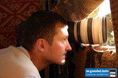 Wildlife: Silviu Matei, fotograful care stă ochi în ochi cu râsul